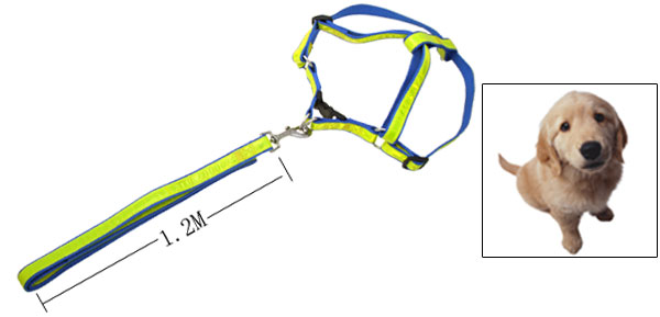 Fashion Nylon Pet Dog Harness and Leash Set Blue and Yellow