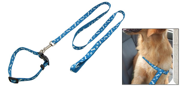 Small Nylon Dog Adjustable Collar and Leash Set Blue