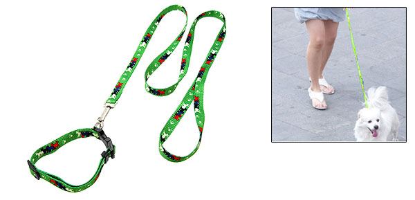 Green Nylon Adjustable Collar and Leash Set for Small Dog