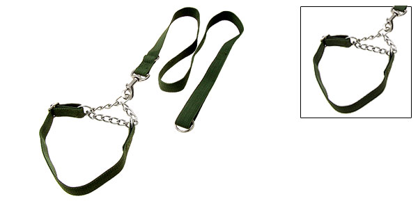 Olive Green Nylon Dog Adjustable Collar and Leash Set Small