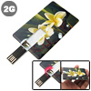 Orchid 2GB Mini Name/Credit/Business Card Size Style USB Flash Dr...