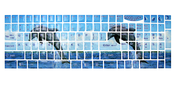 Couple Dolphin Design Shiny PC Keyboard Decal Sticker
