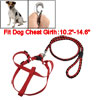 Puppy Braided Nylon Lead Adjustable Dog Harness Halter Leash Set ...