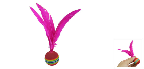 Colorful Head Fuchsia Goose Feather Foam Beach Badminton Shuttlecocks
