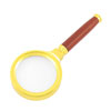 14X 60mm Dia Gold Tone Metal Frame Exquisite Rosewood Handle Magnifier