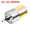 DC 12V 250RPM Micro Gear Box Motor Speed Reduction Electric Gearbox Centric Output Shaft