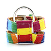 Rainbow Colorful No-Pull Dog Leash Harness Adjusta...